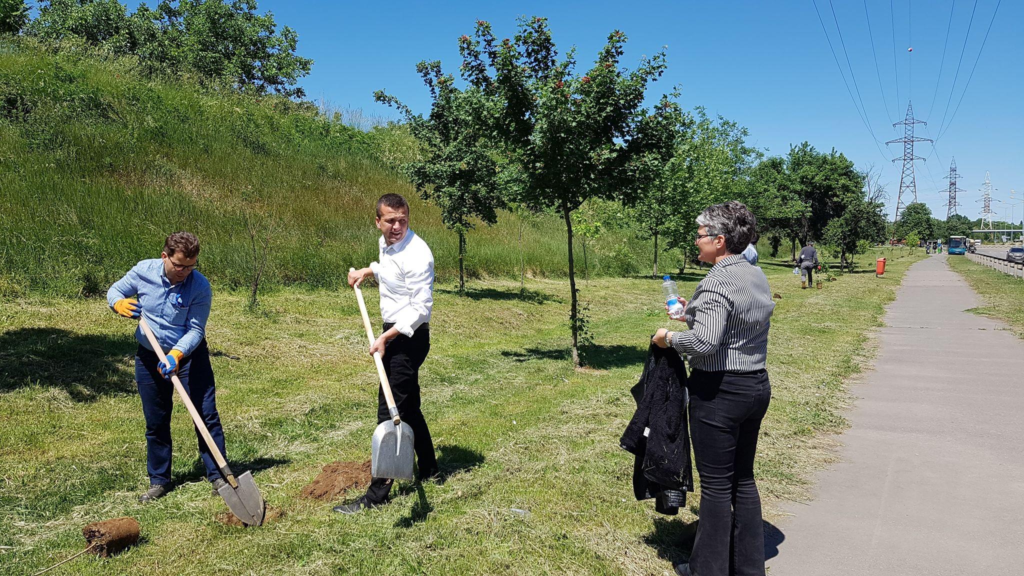 FOTO: Plantare arbori Oradea 22.05.2020