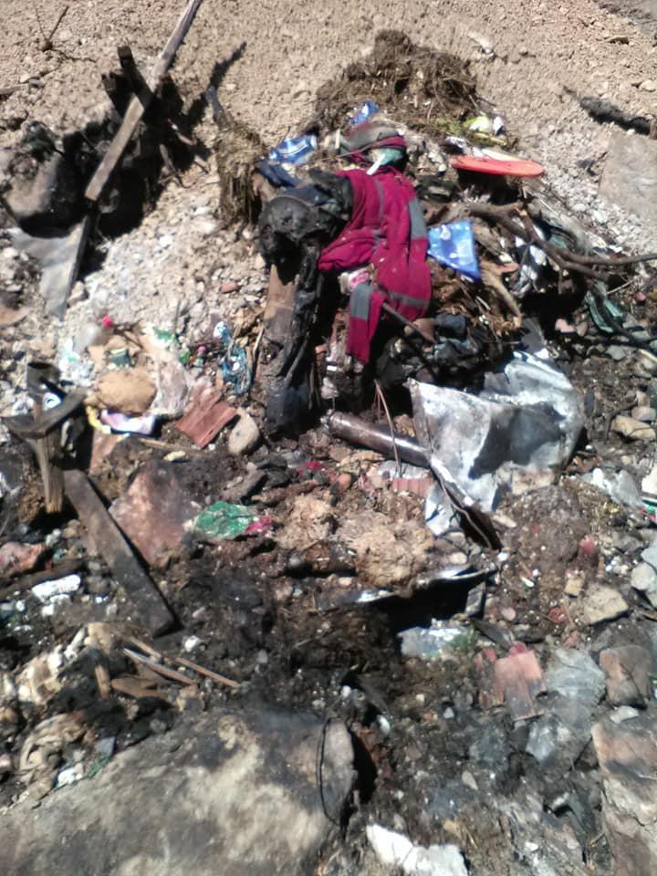 FOTO: Deșeuri incendiate și abandonate Bulz 13.05.2021